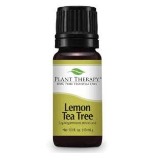 Lemon Tea Tree - Citromillatú Teafa illóolajxx